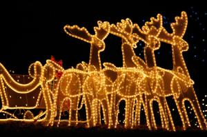Outdoor-Christmas-Lights